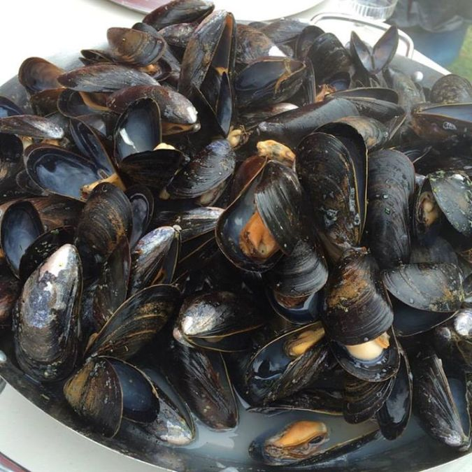 Check out those mussels!! Had a blast cooking these guys during Culture Days in Bay Roberts.